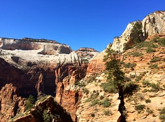 Observation point trail (Like_the_Grand_Canyon) Tags: park travel vacation usa america march utah us nationalpark hiking united hike national zion states np amerika wandern srping 2015