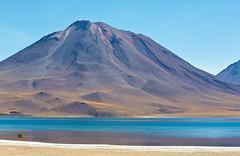 Laguna Miscanti, Atacama, Chile (Miche & Jon Rousell) Tags: chile blue lake southamerica argentina yellow volcano desert turquoise lagoon atacama andes laguna altiplano sanpedrodeatacama atacamadesert lagunamiscanti lagunamenique