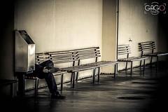 Mutante (GagoFotografia) Tags: cidade amigos brasil dvd pessoas saopaulo natureza centro modelos vida fotos musica augusta luzes casamento cachorros fotografia festa diversas animais artes festas baladas paulista fotografo ruas artederua marginal realidade moradorderua nordestino sertanejo galerias artistasderua becos decorao centrodesopaulo thiagomiranda gagofotografia luizcarlosfernandesmelojunior cpf19346096845 salodefestas gravaodvd gagofotografo