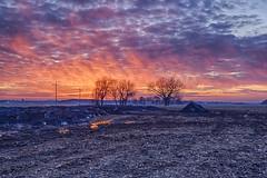 Concrete and Crimson (Kansas Poetry (Patrick)) Tags: sunset kansas lawrencekansas kawvalley patrickemerson patricklovesnancy
