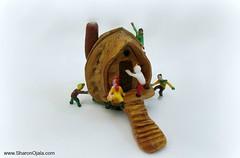 How Do We Get In (Sharon Ojala's Flickr) Tags: miniatures walnut dollhouse teenypeople walnutcrafts