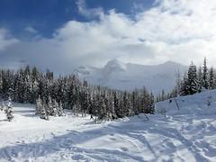 Shaken Not Stirred (5of7) Tags: winter mountains canon outdoors skiing powershot rockymountains serene banffnationalpark sunshinevillage sx700