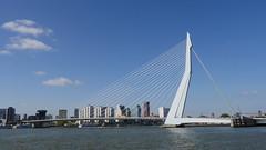 Rotterdam086