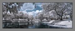 P1010083 Panorama (xxtreme942) Tags: park trees panorama garden ir singapore pano infrared