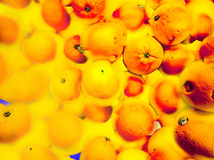 orange (Kai-Ming :-))) Tags: kaiming kmwhk orange art digitalart sony e6533 blue creative effect layer orangecolor hongkong colorful complementarycolor