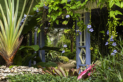 A rich and wonderful mini paradise (-j-o-s-e-) Tags: queen elizabeth ii botanic garden grand cayman british west indies view tropical subtropical exotic flowers flora fauna pathway path foliage trailing plants palms pergola painted