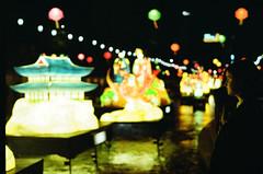 48190030-1 (dariyasalauyova) Tags: portrait film 35mm lights minolta minoltax700 korea analogue filmphoto