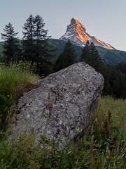 La star et l'anonyme (1Florelle) Tags: nature alpes paysages montagnes cervin zernatt