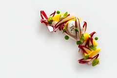 Radicchio Tardivo (sjpvz) Tags: elevenmadisonpark basil emp empbook finedining food fourstars mango mozzarella portfolioselect radicchio radicchiotardivo restaurantfood salad vegetarian winter