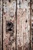 Texture (aljones27) Tags: berwickupontweed northumbria northumberland texture wood paint rust peelign matchpoint winner t518 matchpointwinner