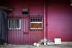 purple wall (twinleaves) Tags: d5300 tokyo minowa wall lattice window