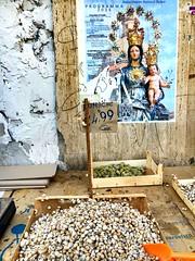 Palermo - Mediterranean (melqart80) Tags: sacro santini sacroeprofano italy sicilia sneills mediterranean sicily palermo lumachesneills