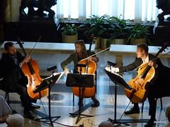 Cello trio PSO Classical Mixer (javadoug) Tags: pso cello trio classical pittsburgh symphony mixer nature javadoug