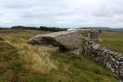Rock Cat Knott (Walruscharmer) Tags: moorland gritstoneboulder countyboundary watershed drystonewall bowland gisburnforest northyorkshire lancashire england