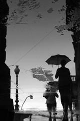 Rain reflections (tomavim) Tags: rain water reflections umbrella