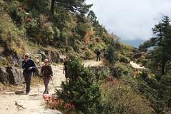 Khumbu (wronskydk) Tags: susanneschjlinlarsen bentebendiksen namchebazar khumbu nepal
