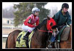 IMG_9597 (femalejockeys) Tags: femalejockeys turfway park female athletes horse racing horses thoroughbred kentucky derby