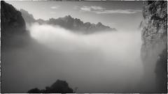 Subiendo por la Trea (Carpetovetón) Tags: blancoynegro bn blackwhite noiretblanc monocromático monocromatic trea canaldetrea macizocentral urrieles torrecerredo llambrión paisaje picosdeeuropa peaksofeurope montaña landscape sonynex5n asturias león niebla fog españa