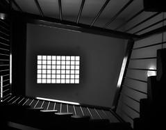 Essendon Airport (phunnyfotos) Tags: phunnyfotos australia victoria vic melbourne essendon airport terminal stair stairs steps lookingup mono bw monotone skylight rooflight balustrade handrail treads nikon d750 nikond750 light interior
