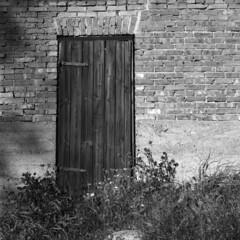Yashica 44/RPX100 (Jonas.Nilsson) Tags: 127film yashica44 yashikor rpx100 rollei xtol 4x4 blackandwhite bw believeinfilm filmphotography film filmisnotdead iamfilm mediumformat mf monochrome square