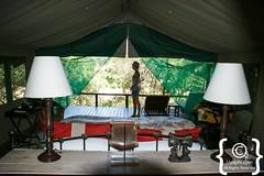 Tanda Tula Safari Camp (uyaphi) Tags: timbavati safaricamp tandatulasafaricamp tandatulacamp tandatula krugernationalpark kruger krugerpark krugerparkwalkingsafaris southafrica southafricatravel southafricasafari africa africansafari africatravel africasafari safari safaris travel holiday holidays bestofafrica photographs photooftheday