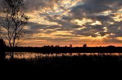 """ Sunset Gildehauservenn "" #18-09-2016.-19:25# (Kalbonsai) Tags: nikon 5100 1685mm gildehauservenn germany sunset zonsondergang clouds naturphotography outdoorphotography color waterscape gras trees"