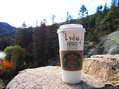 Starbucks Tour 1 (Lydia_Brave) Tags: starbucks fall salt caramel saltedcaramel coffee morning forst trees orange rock colorado brand lydia name spelling art ad photo photography photoshop photographer pine pinetree