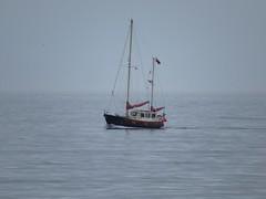 3955 Motor yacht in Llanddwyn Bay (Andy panomaniacanonymous) Tags: 20160907 bbb boat cruise llanddwynbay mmm motoryacht roundtrip ynysmon yyy
