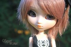 Nanami - Pullip Kaela (Sayuri-chan) Tags: pullip pullips kaela obitsu s wig brown white park doll crobidoll dress manzana con gusano grey eyes