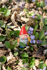 Gnome in Spring (summerrrc) Tags: flowers gnome purple amelie