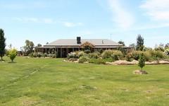 Lot 1 Zanotto Road, Nericon NSW