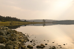 Lochindorb stones (foggybummer (Keith)) Tags: reflections rocks atmospheric calmness lochindorb