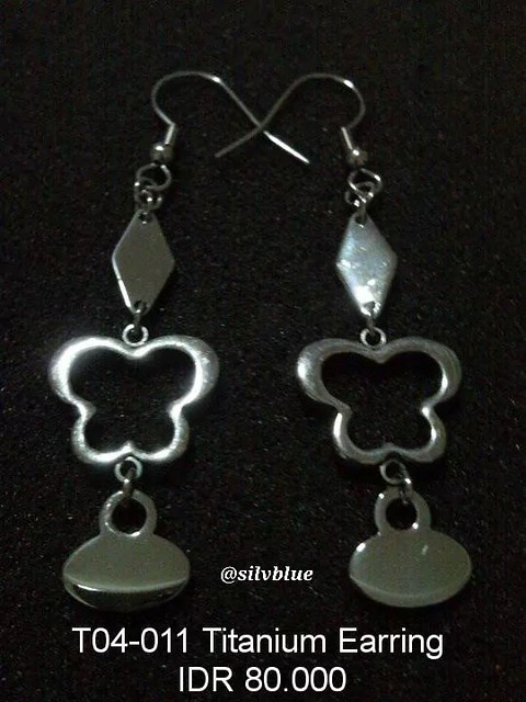 T04-011 Titanium Earrings