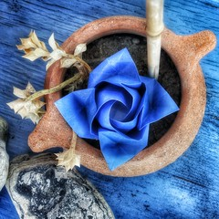 True love is like a blue rose, precious and rare...... (claudiaboujdaa) Tags: flower art love rose paperart origami papiroflexia toshikazukawasaki