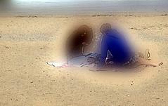 2016-07-09 Houlgate beach 2 (april-mo) Tags: beach sandybeach plage sable holidays vacances normandy normandie houlgate france blurred blur