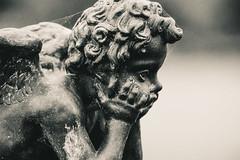 One Bored Cherub (ian.berridge1) Tags: blackandwhite monochrome statue emotion atmosphere depthoffield dorset cherub