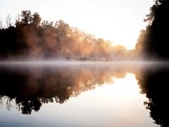 Sound of sunrise (Algemir) Tags: sunrise  river  water  reflection  fog  mist forest  contrast