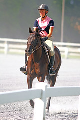 IMG_2414 (SJH Foto) Tags: horse show rider teens teenagers girls