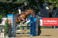 DSC08946_s (AndiP66) Tags: springen pferdesporttage dagmersellen luzern 2016 juli july 19juli2016 pferd horse schweiz switzerland kantonluzern cantonoflucerne concours wettbewerb horsejumping springreiten pferdespringen equestrian sports pferdesport sport martinameyer grueb wolhusen sony sonyalpha 77markii 77ii 77m2 a77ii alpha ilca77m2 slta77ii sony70400mm f456 sony70400mmf456gssmii sal70400g2 andreaspeters ch