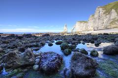Low tide [FR] (ta92310) Tags: travel hdr france europe 76 seinemaritime etretat normandie normandy falaises cliff summer 2016 ete arche aiguille falaise aval manneporte tide low