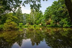 Watermolen Schoneveld in Wilsum (Jan v B) Tags: grafschaftbentheim vakantie2016 wilsum niedersachsen duitsland natuur nature refelction spiegeling watermolen vijver rust