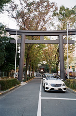 -37 (UME2nd) Tags: fujifilm japan natura classica