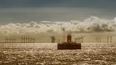 mit AIDADiva vor Kopenhagen (1 von 1) (FotosAndreas) Tags: aidadiva aida ostseekreuzfahrt windkraftrder energie erneuerbareenergie windenergie energy