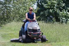 mowing. (aviandigital) Tags: august mowing mower man
