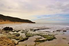 Bells Beach (andrewkoster1) Tags: outdoor rockpools landscape beach ocean bells surf