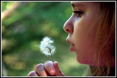 Tendre enfance ! (Les photos de LN) Tags: enfant enfance innocence fleur chandelle nature portrait douceur