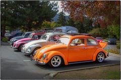 Beetle Row (NoJuan) Tags: nikoncoolpix995 995 coolpix volkswagen vw xxxdriveinissaquah