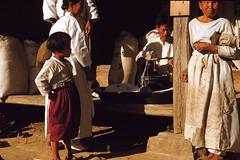 Measuring Flour, 1953 (m20wc51) Tags: war korea korean 1953