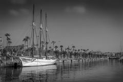 Days (B&W) (Davide Argano) Tags: ocean barcelona trip sea bw white black water contrast boat spain holidays day ship espana journey barceloneta stunning sail catalunya