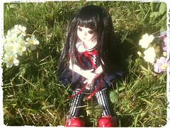 Among the Flowers (Missy_Crane) Tags: flowers baby love doll you yo tiny kawaii grapefruit bjd yoyo dl fullset